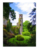 Vivian-allsopp-blarney-castle