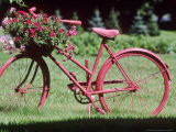 Jean-claude-hurni-red-bicycle-with-flower-arrangement-on-the-handle-bars