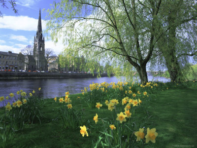 Kathy-collins-city-in-spring-perth-perthshire-tayside-scotland-uk-europe